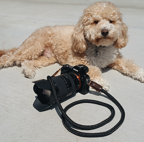 sony a7S cord camera strap from sailor strap